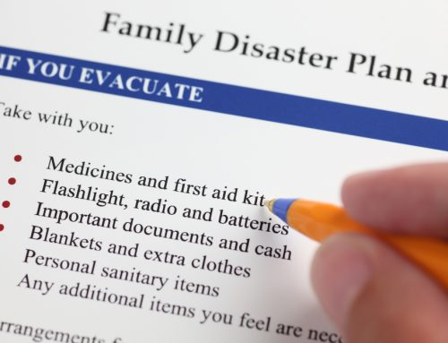 5 Steps to Prepare Your Pet for a Disaster
